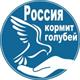 Аватар пользователя Елена Мельникова